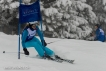 Ski 3738
