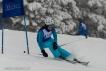 Ski 3739