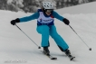 Ski 3741