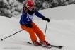 Ski 3753