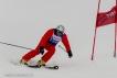 Ski 3772