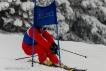 Ski 3775