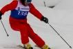 Ski 3780