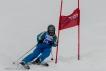 Ski 3801