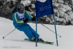 Ski 3806