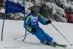 Ski 3808