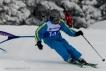 Ski 3809