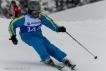 Ski 3810