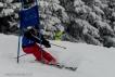 Ski 3815