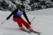 Ski 3817