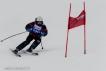 Ski 3821