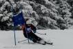 Ski 3822