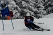 Ski 3823