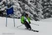 Ski 3831