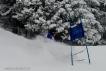 Ski 3850