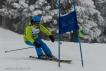 Ski 3878