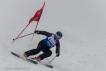 Ski 3900