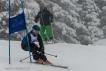 Ski 3903