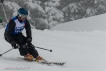 Ski 3904
