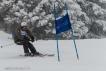 Ski 3911