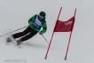 Ski 3921