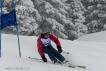 Ski 3934