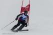 Ski 3937