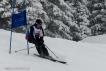 Ski 3939