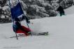 Ski 3944