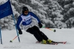 Ski 3952