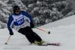Ski 3953