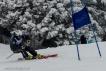 Ski 3959