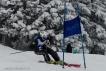 Ski 3960