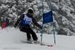 Ski 3988