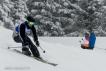 Ski 4011