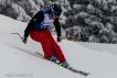 Ski 4020