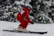 Ski 4039