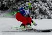 Ski 4053