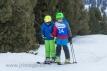 Ski 1533