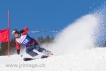 Ski 2031