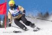 Ski 2045