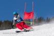 Ski 2052