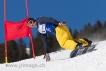 Ski 2082