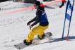 Ski 2084