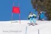 Ski 1591