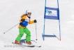Ski 1596