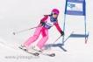 Ski 1648