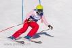 Ski 1656