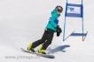 Ski 1673