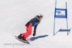Ski 1676